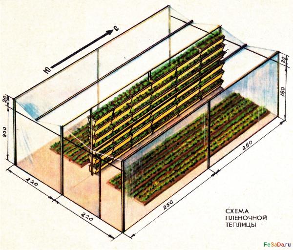 При выращивании клубники под